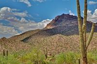 Home for sale: 2607 N. Brice --, Mesa, AZ 85207