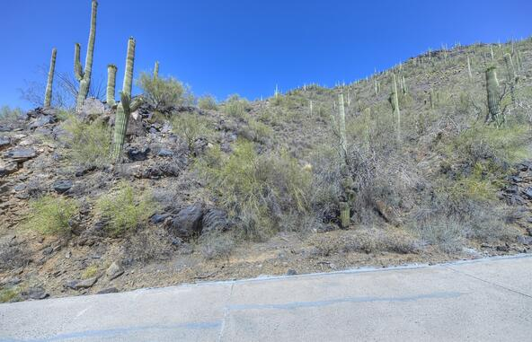 346xx N. Secluded Ln., Carefree, AZ 85377 Photo 21