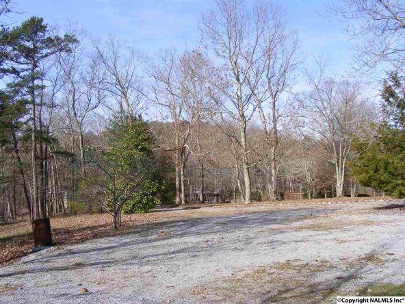 9416 County Rd. 103, Mentone, AL 35984 Photo 12