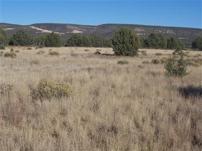 1357 W. Pinto Dr., Ash Fork, AZ 86320 Photo 11