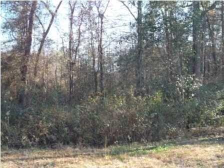 200 Fox Run, Deatsville, AL 36022 Photo 10