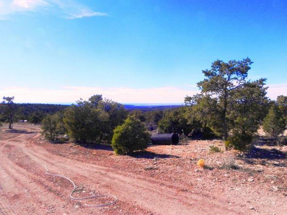 9877 Bluebell Ln., White Mountain Lake, AZ 85912 Photo 24
