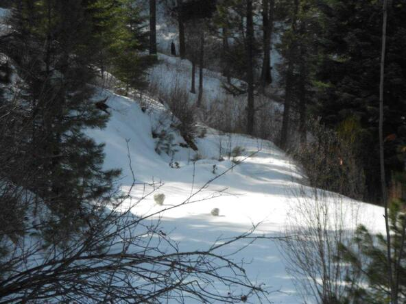 Lot 32 Castle Mountain Creek Blk 5, Garden Valley, ID 83622 Photo 2