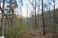 Home for sale: 498 Hwy. 912, Travelers Rest, SC 29690