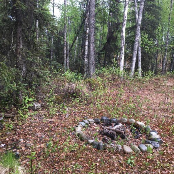 21313 W. Loc Lohmand Dr., Big Lake, AK 99654 Photo 13