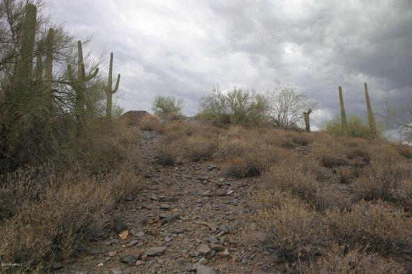 66xx E. Military Rd., Cave Creek, AZ 85331 Photo 9