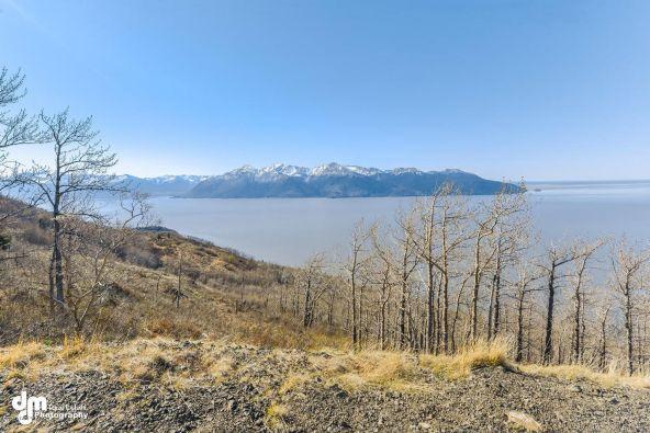 L8 Southpointe Bluff Dr., Anchorage, AK 99516 Photo 28