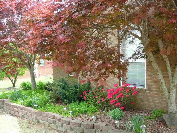 1105 Cantrell Dr., Mountain View, AR 72560 Photo 7