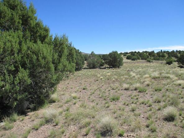 8451 W. Dillon Wash Rd., Prescott, AZ 86305 Photo 20