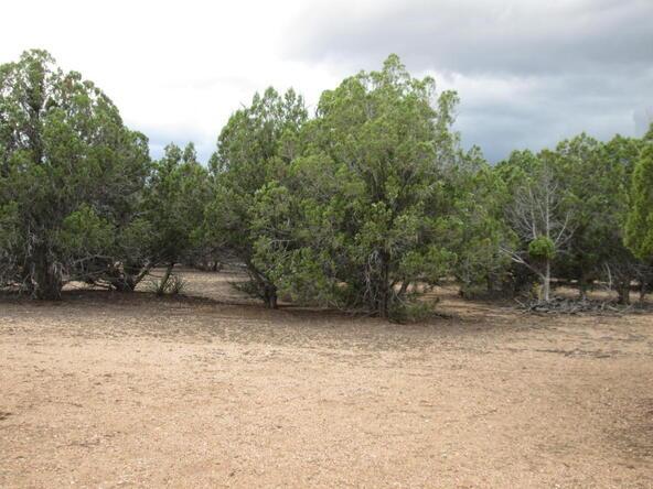 11100 W. Rawhide Trail, Skull Valley, AZ 86338 Photo 23