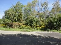 Home for sale: 156 Deyo Hill Rd. Lot 10, Johnson City, NY 13790