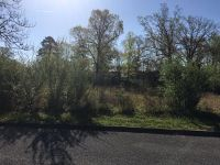 Home for sale: Ridgeway Dr., Norris, TN 37828