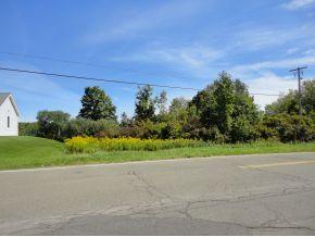 156 Deyo Hill Rd., Johnson City, NY 13790 Photo 1