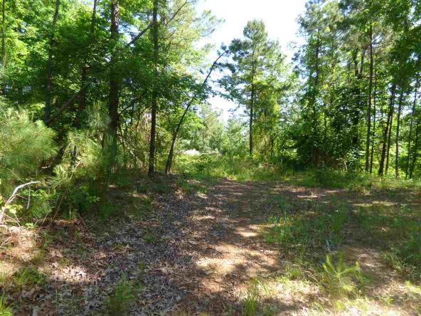 12 Ac Charlie Stover Rd., Royal, AR 71968 Photo 3