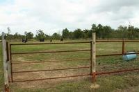 Home for sale: 11700 Garrett Rd., Houston, TX 77044