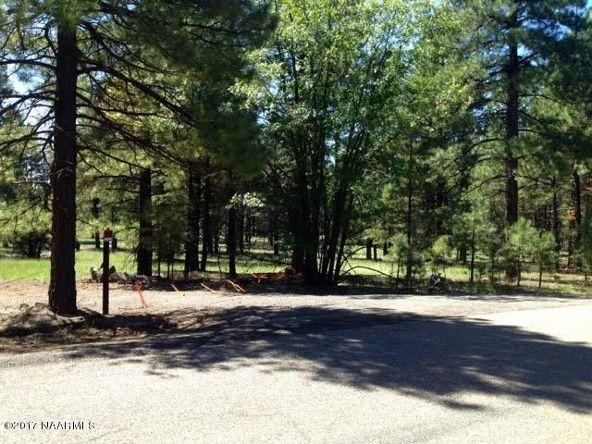 125 E. Mount Elden Lookout Rd., Flagstaff, AZ 86001 Photo 5