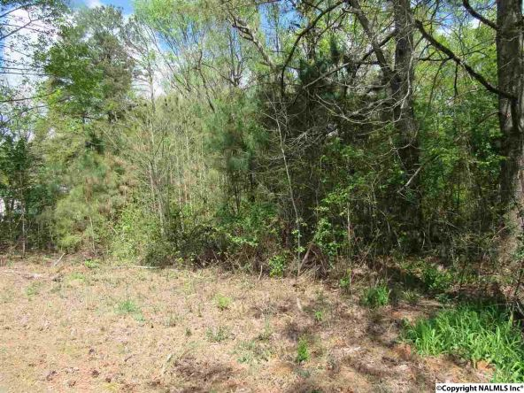705 County Rd. 1843, Arab, AL 35016 Photo 8