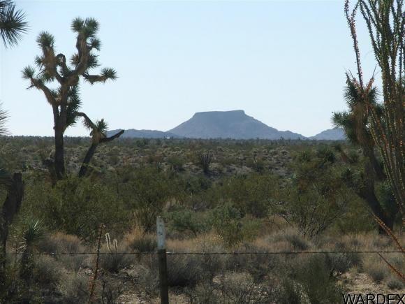 1752 E. Boriana Mine Rd., Yucca, AZ 86438 Photo 5