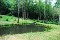 Home for sale: 0 Falls Rd., Scaly Mountain, NC 28775