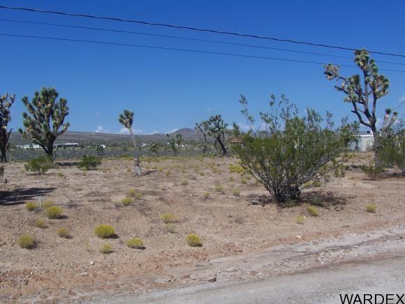 26181 N. Hummingbird Ln., Meadview, AZ 86444 Photo 6