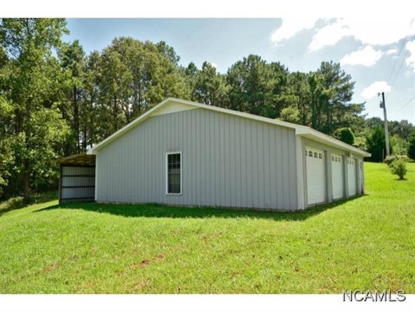 132 Co Rd. 202, Crane Hill, AL 35053 Photo 17