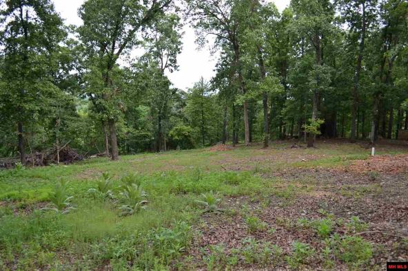 390 Mc 3041, Yellville, AR 72687 Photo 2