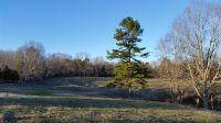 Home for sale: 1 Hunting Camp - Lot #1, Fairview, TN 37062