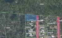 Home for sale: 137 Idlewood Acres Ln., Pomona Park, FL 32181