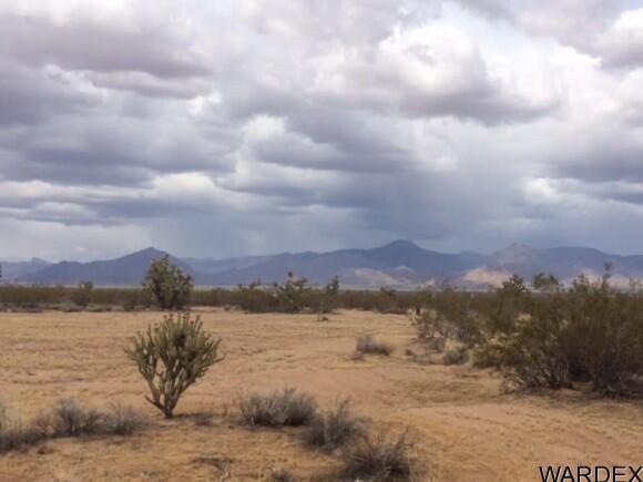 21570 S. John Wayne Rd., Yucca, AZ 86438 Photo 34
