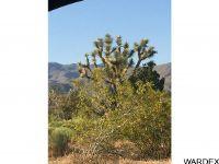 Home for sale: 000 S. Cheyenne Rd., Yucca, AZ 86438