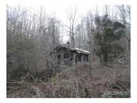 Home for sale: 152 Cedar Creek Rd., Black Mountain, NC 28711
