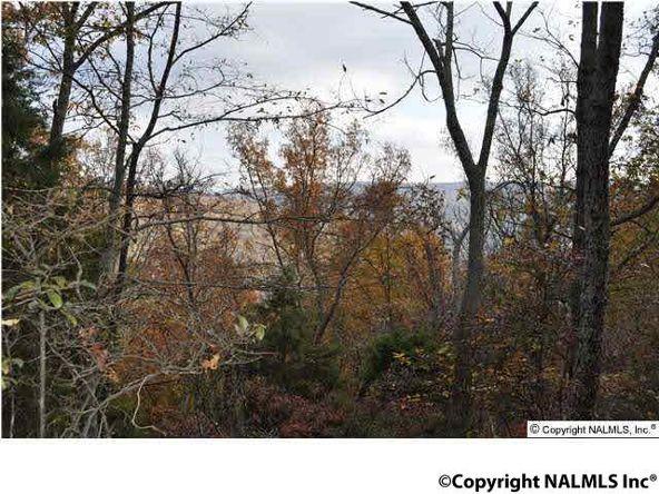3 South Bluff Trail, Huntsville, AL 35803 Photo 4