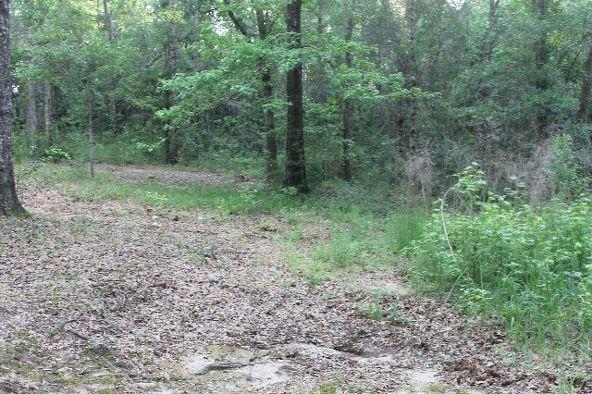 30191 Hollinger Creek Dr., Robertsdale, AL 36567 Photo 25