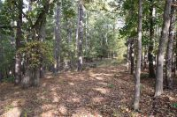 Home for sale: Lot 25 Windy Hills Rd., Rogers, AR 72756