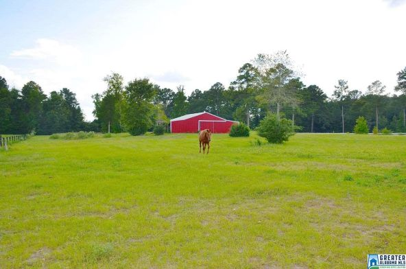 1161 Camp Branch Cir., Alabaster, AL 35007 Photo 39