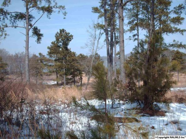 2 County Rd. 67, Langston, AL 35755 Photo 2