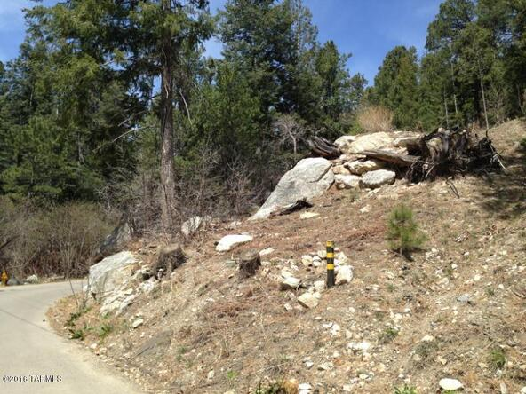 11081 E. Turkey Run, Mount Lemmon, AZ 85619 Photo 7
