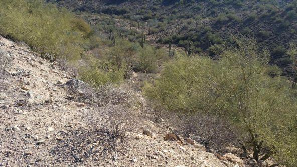 15457 E. Sycamore Dr., Fountain Hills, AZ 85268 Photo 4
