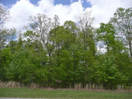 Long Branch Rd., Spencer, TN 38585 Photo 12