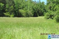 Home for sale: 61 Acres White Oak Rd., Ashland, AL 36251