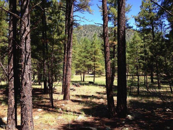 125 E. Mount Elden Lookout Rd., Flagstaff, AZ 86001 Photo 2