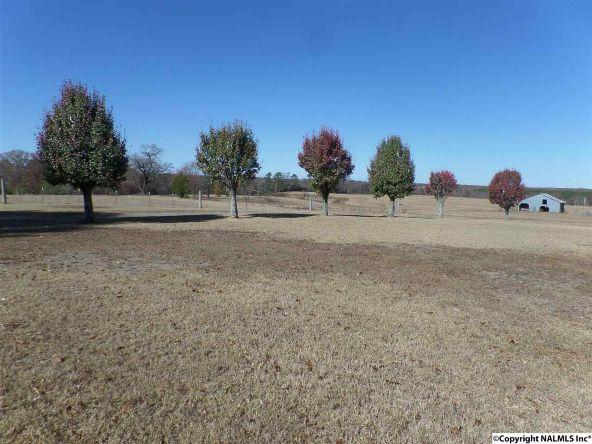 11 County Rd. 317, Dawson, AL 35963 Photo 40