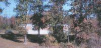 Home for sale: 000 Ripley Ln., Carbon Hill, AL 35549