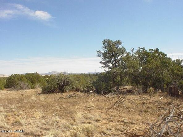 1a N. 8690, Concho, AZ 85924 Photo 44
