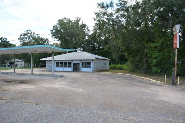 2590 Hwy. 84, Daleville, AL 36322 Photo 3