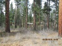 Home for sale: Lot 5 Grouse Dr., Idaho City, ID 83631