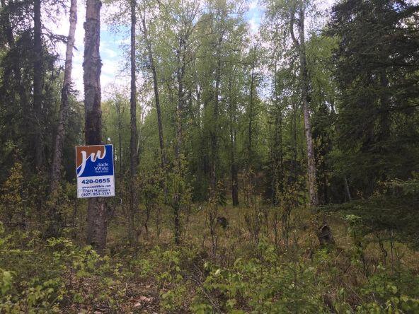 32677 Salmon Run Dr., Soldotna, AK 99669 Photo 12