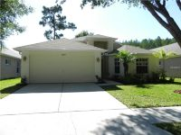 Home for sale: 13409 Fawn Springs Dr., Tampa, FL 33626