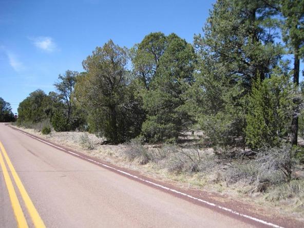 2901 Buckskin Rd., Overgaard, AZ 85933 Photo 7