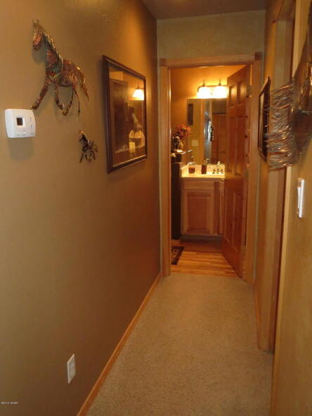 2295 Bison Ranch Trail, Overgaard, AZ 85933 Photo 62